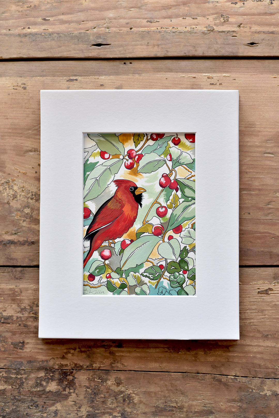 Red-winter-cardinal-3